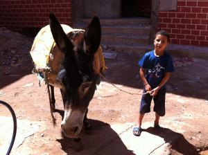 last blog morocco 12