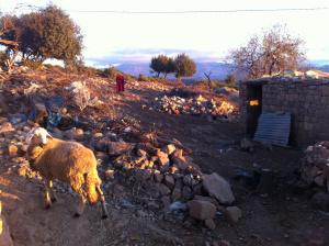 last blog morocco 15