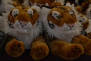 london zoo nov 2014 375